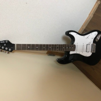 Selva Electric Guitar 6000 yen